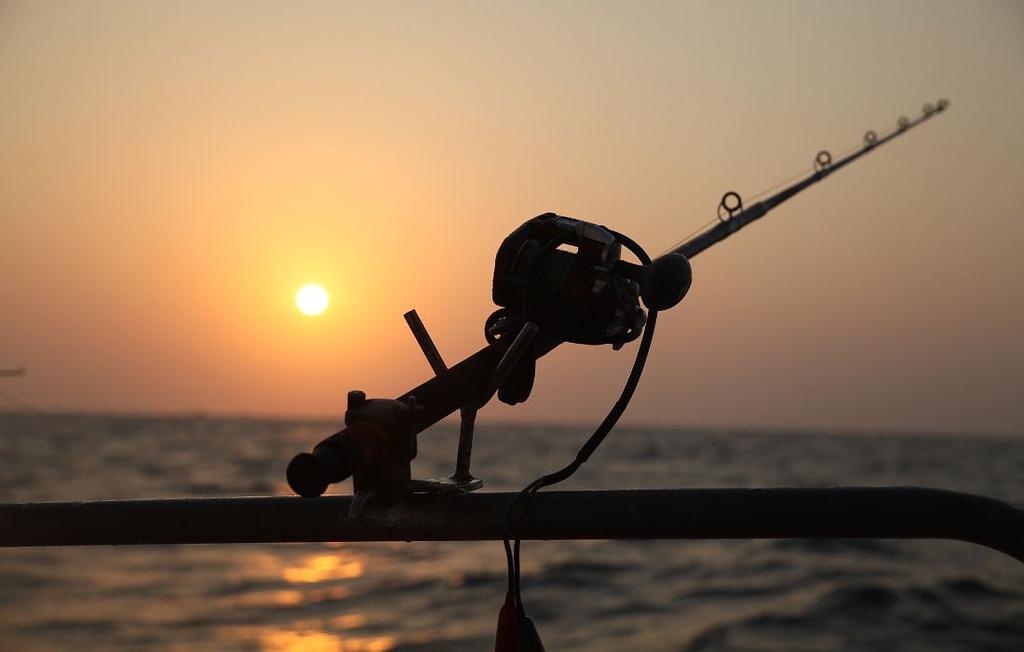 best baitcasting reel